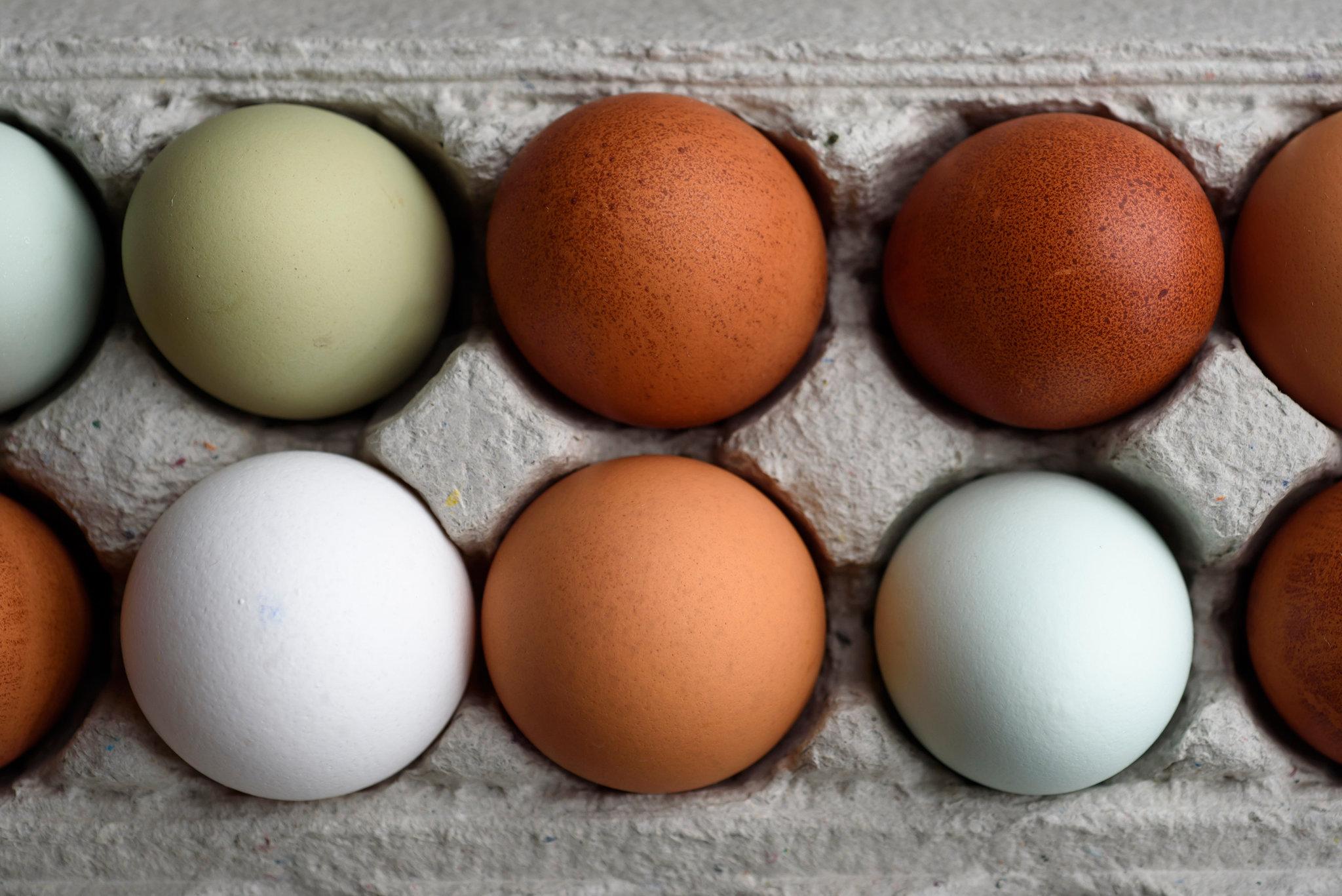Recipe: How To Make Eggs