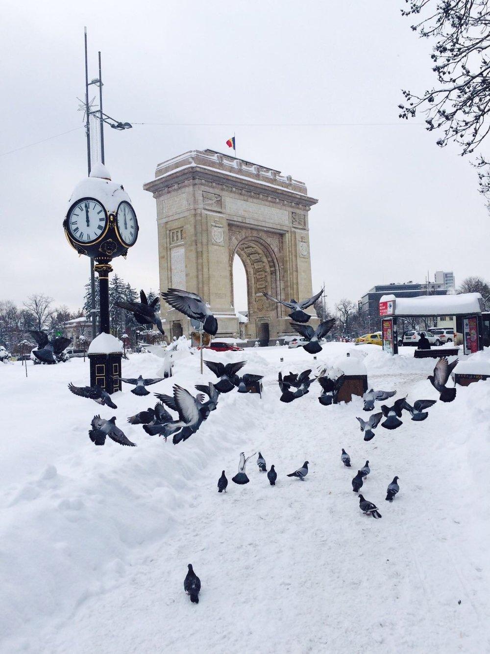 Bucharest2CRomania-4.jpg