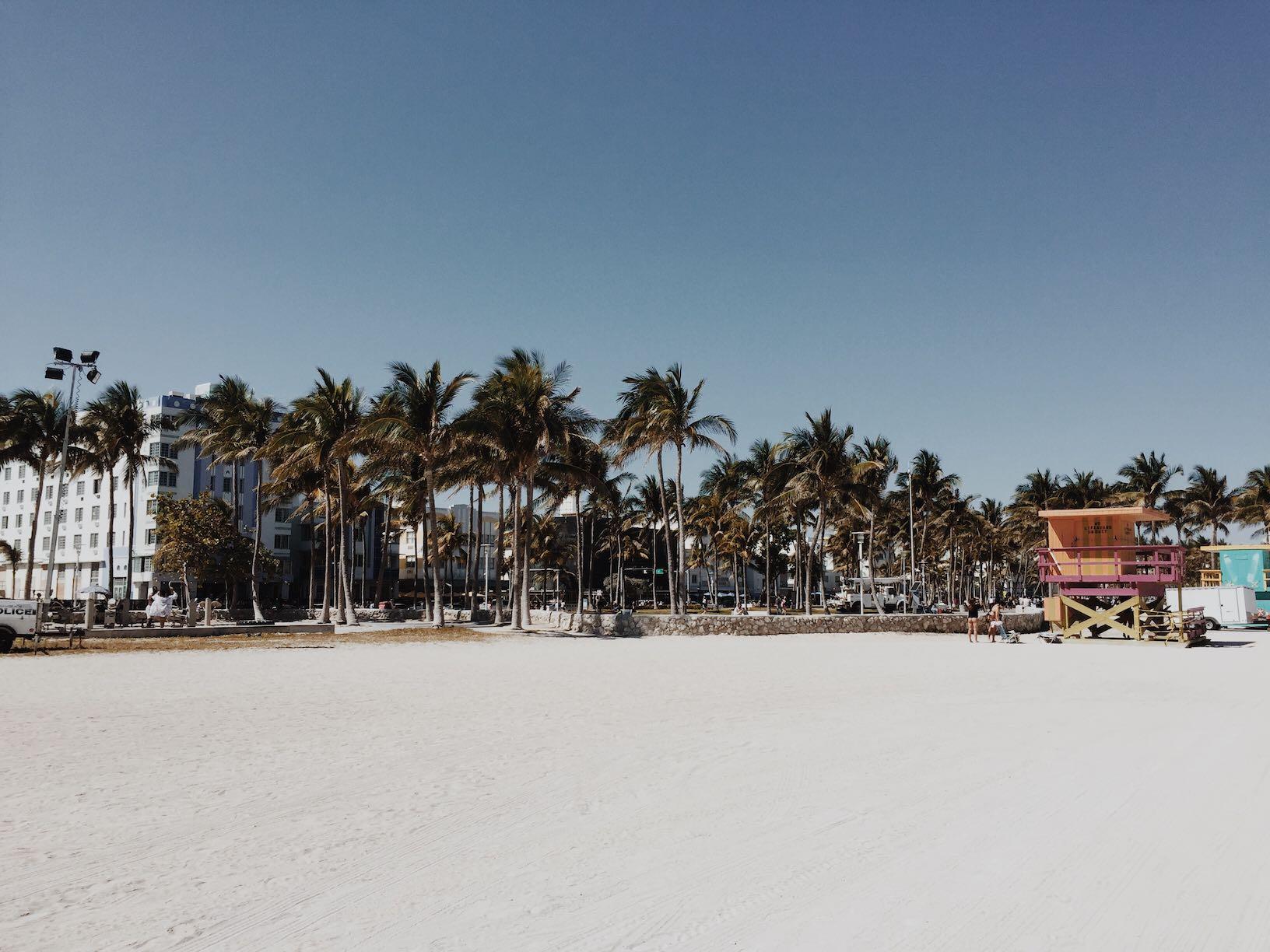 The Weekly Getaway: Spring Break in Miami