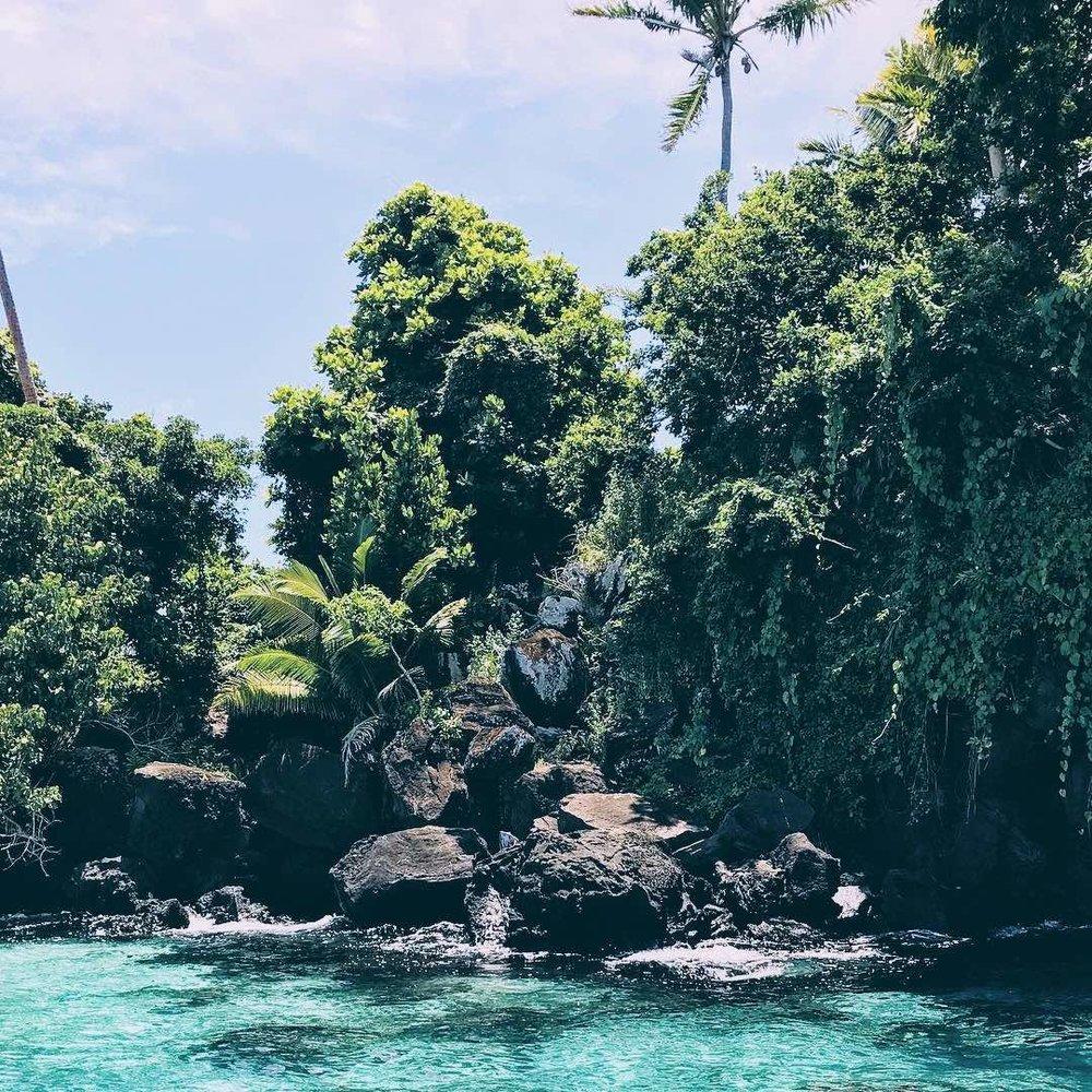 Taveuni1-MarieNieves.jpeg