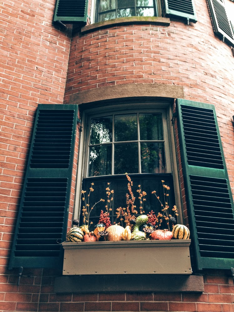 bh-halloween-window-box.jpg