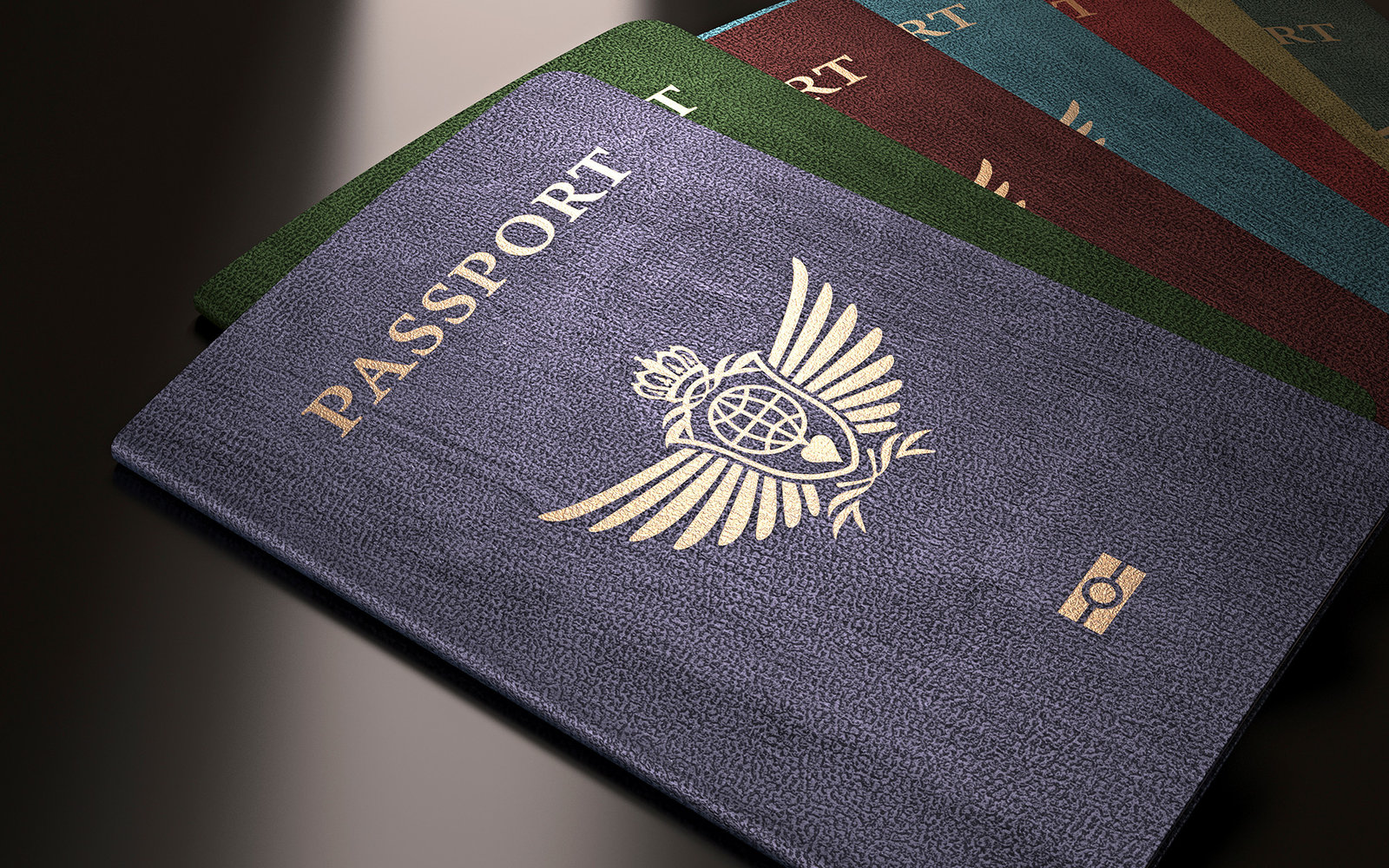 What Your Passport Colour Really Means