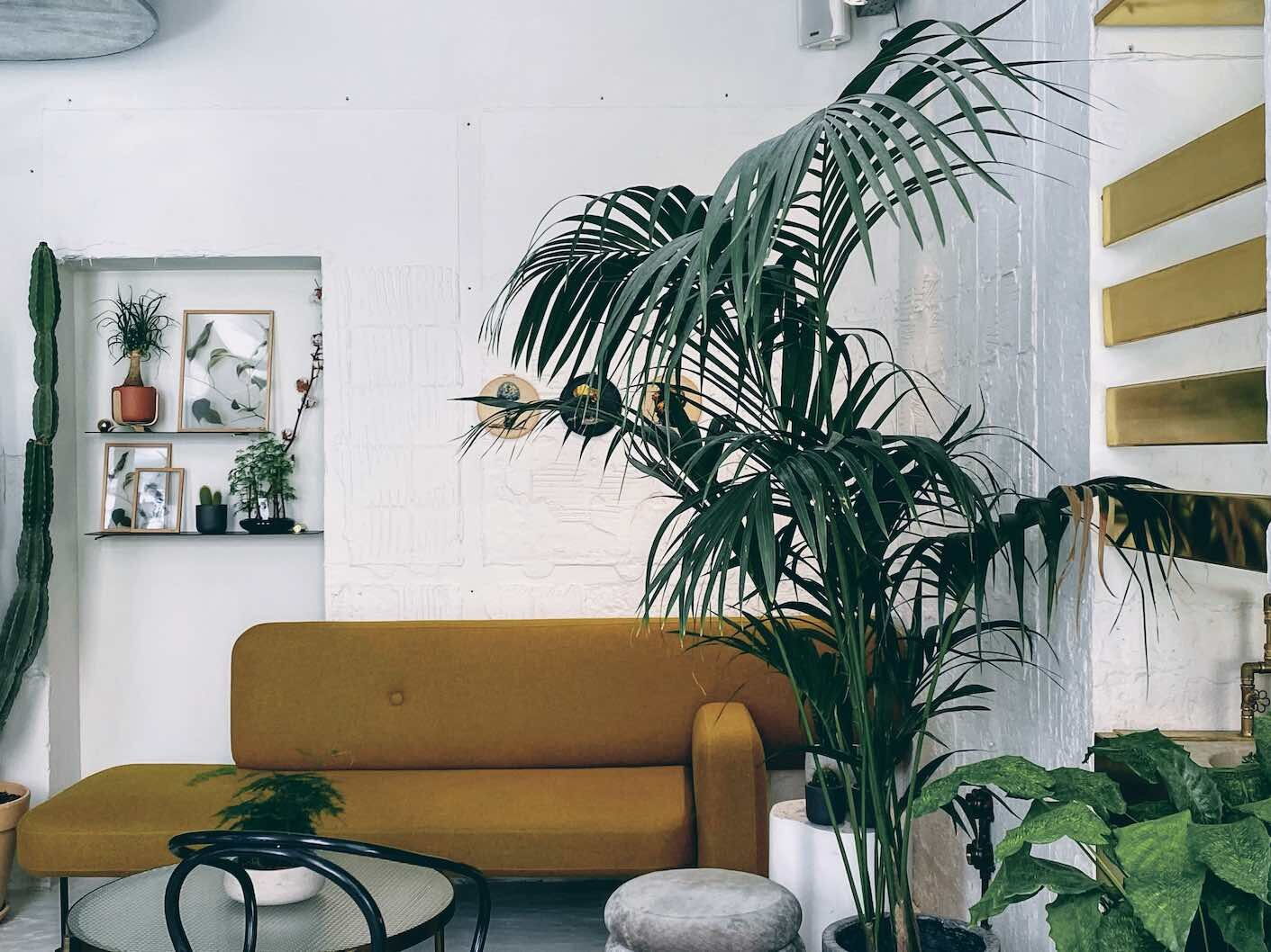 Athens: flowers, furniture and coffee at hip concept store Minu