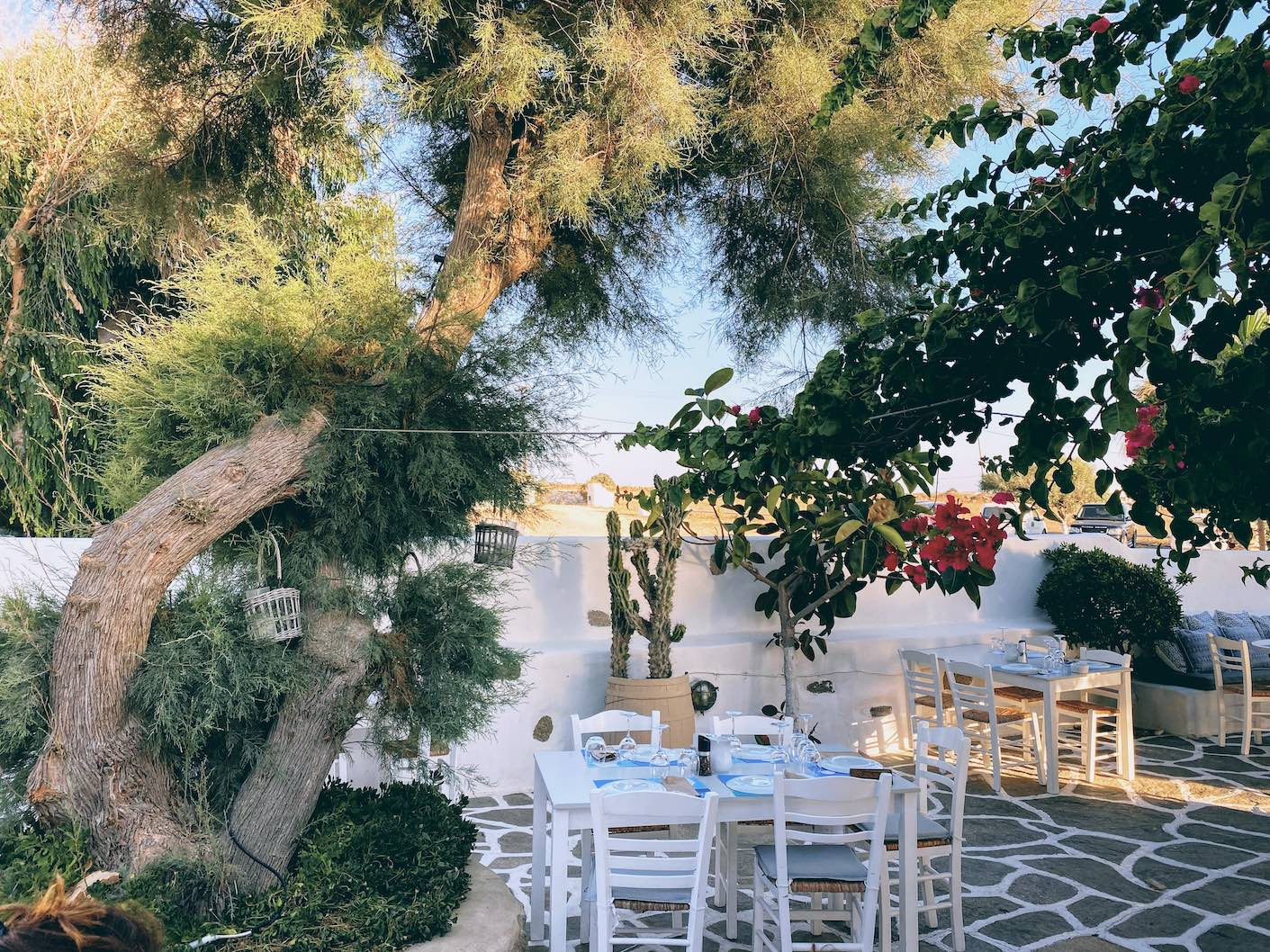 Paros: gorgeous sunsets and elegant dining at Siparos