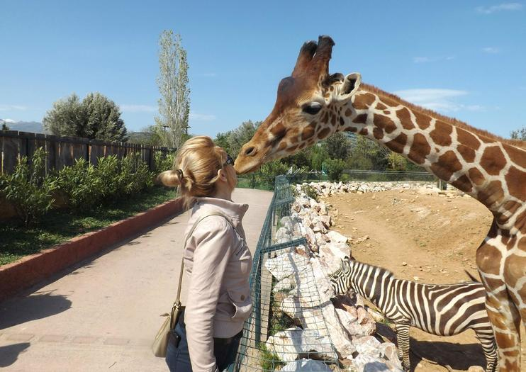 KT (4 hours): [Athens] Visit at the Attica Zoological Park Half-Day Tour