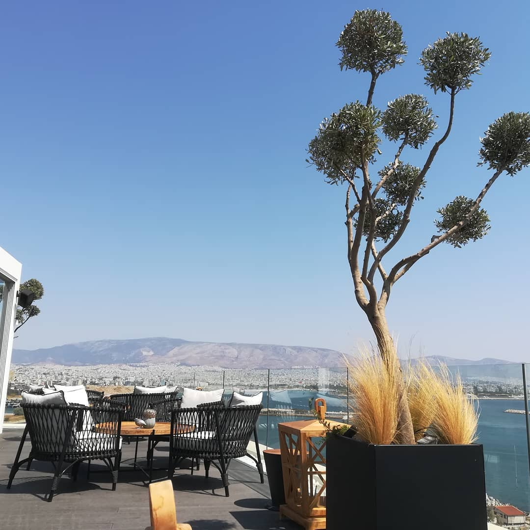 The Alex Hotel, Athens - Rooftop